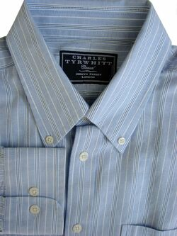 CHARLES TYRWHITT CASUAL Shirt Mens 17 L Light Blue - Stripes