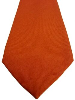 CHARLES TYRWHITT Mens Tie Orange