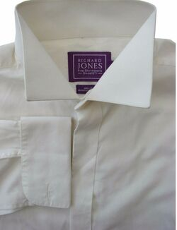 RICHARD JONES Shirt Mens 16 M Off White MINI IRON – CONCEALED BUTTONS