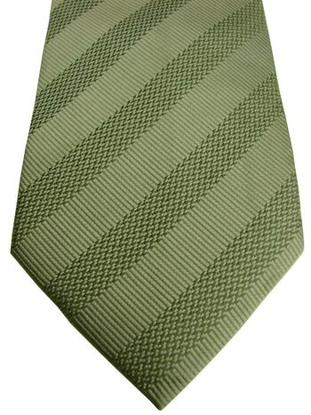 TED BAKER ENDURANCE Mens Tie Green - Stripes SKINNY