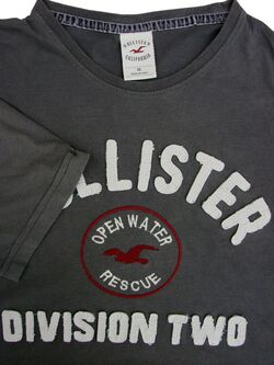 HOLLISTER T-Shirt Mens M Dark Grey - Division Two Open Water Rescue SHORT SLEEVE